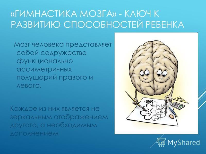 «ГИМНАСТИКА МОЗГА» - КЛЮЧ К РАЗВИТИЮ СПОСОБНОСТЕЙ РЕБЕНКА Мозг человека представляет собой содружество функционально ассиметричных полушарий правого и левого. Каждое из них является не зеркальным отображением другого, а необходимым дополнением