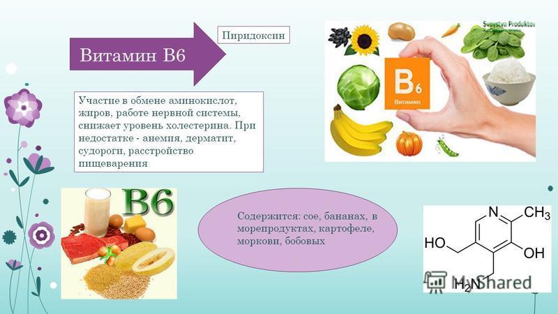 Витамин В6 Участие в обмене аминокислот, жиров, работе нервной системы, снижает уровень холестерина. При недостатке - анемия, дерматит, судороги, расстройство пищеварения Содержится: сое, бананах, в морепродуктах, картофеле, моркови, бобовых Пиридокс