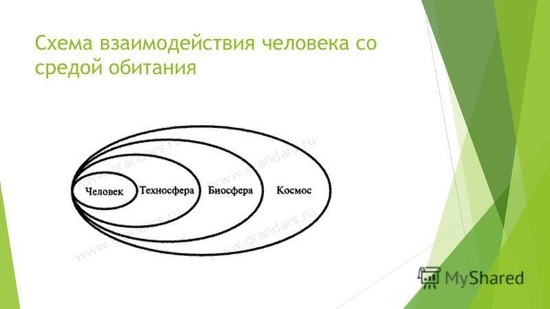Схема взаимодействия человека со средой обитания