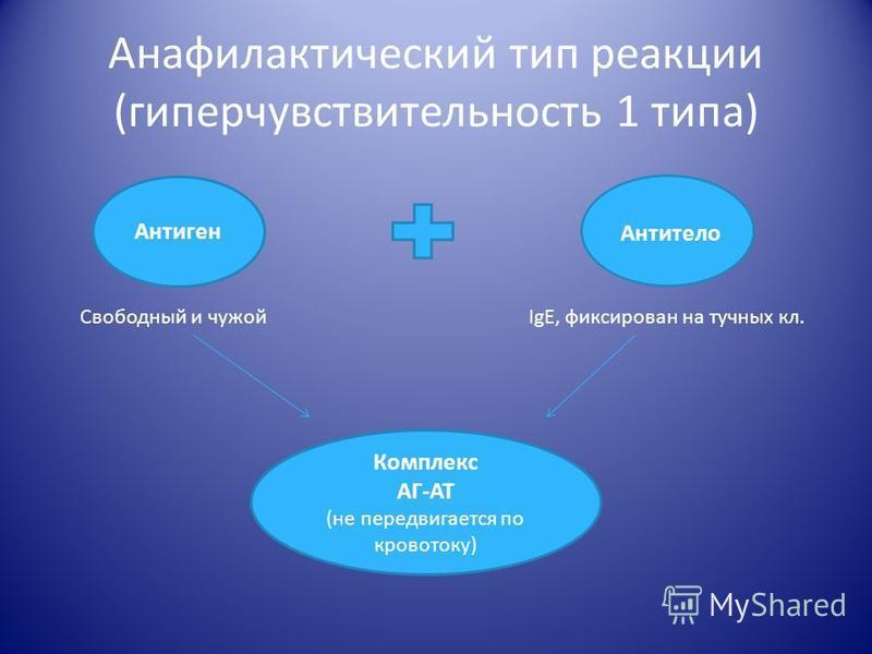 Анафилактический тип реакции (гиперчувствительность 1 типа) Антиген Антитело Свободный и чужойIgE, фиксирован на тучных кл. Комплекс АГ-АТ (не передвигается по кровотоку)