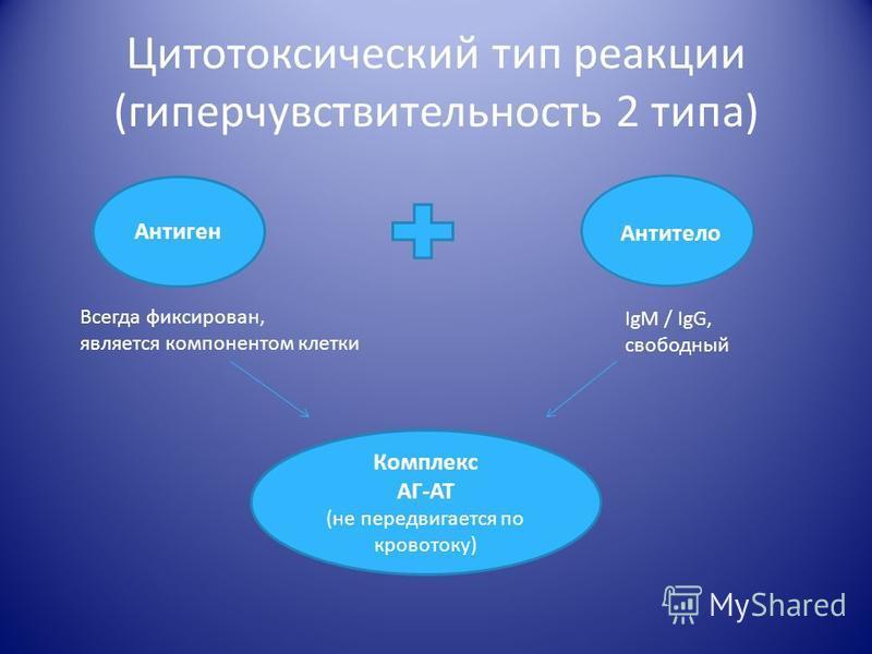 Цитотоксический тип реакции (гиперчувствительность 2 типа) Антиген Антитело Всегда фиксирован, является компонентом клетки IgM / IgG, свободный Комплекс АГ-АТ (не передвигается по кровотоку)