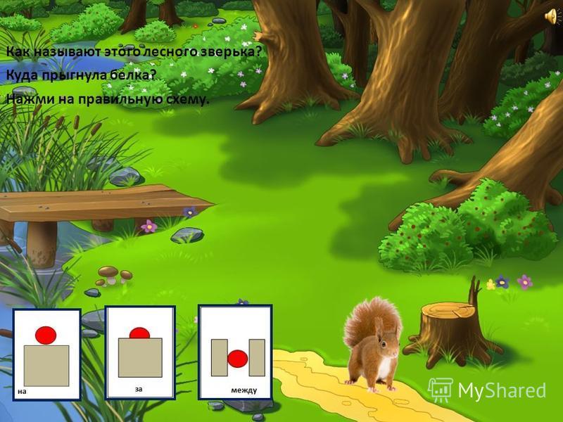Какого лесного зверя вы увидели? Кто сидит в норе? Под чем вырыла лиса нору? Нажми на правильную схему.