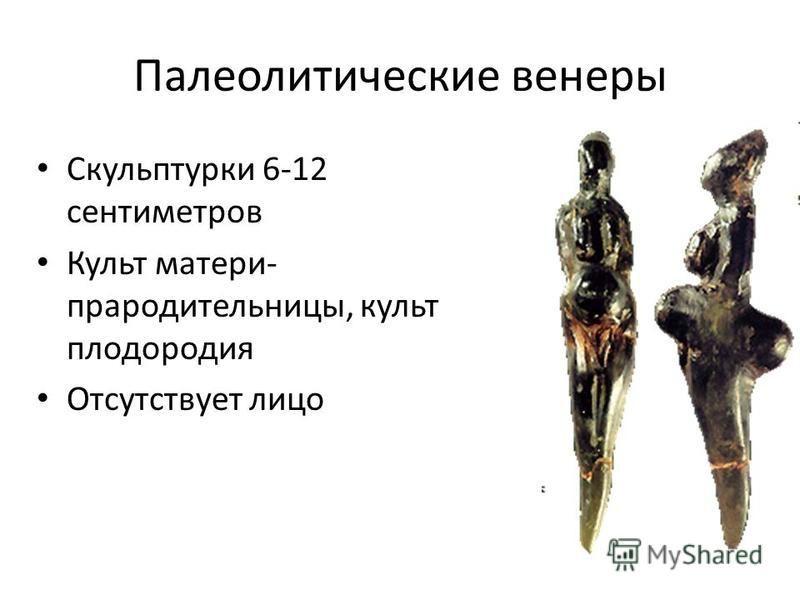 Палеолитические венеры Скульптурки 6-12 сантиметров Культ матери- прародительницы, культ плодородия Отсутствует лицо