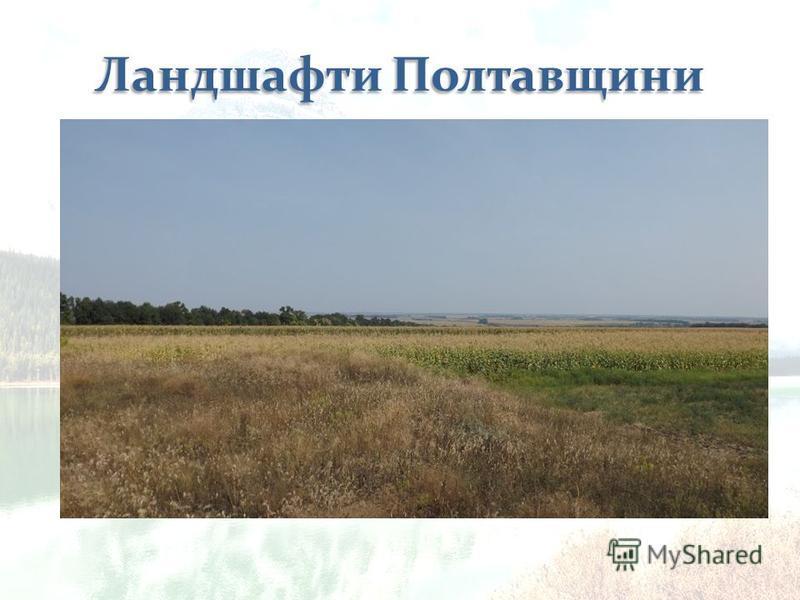 До степової природної зони належить 8% площі області (у її південно-східній частині). Тут переважав північно-степовий підтип природних ландшафтів степового типу східноєвропейського рівнинного класу (різнотравно-типчаково- ковилові степи на чорноземах