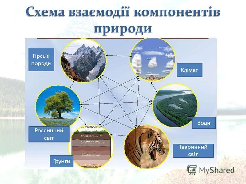 Гірські породи Клімат Рослинний світ Грунти Тваринний світ Води