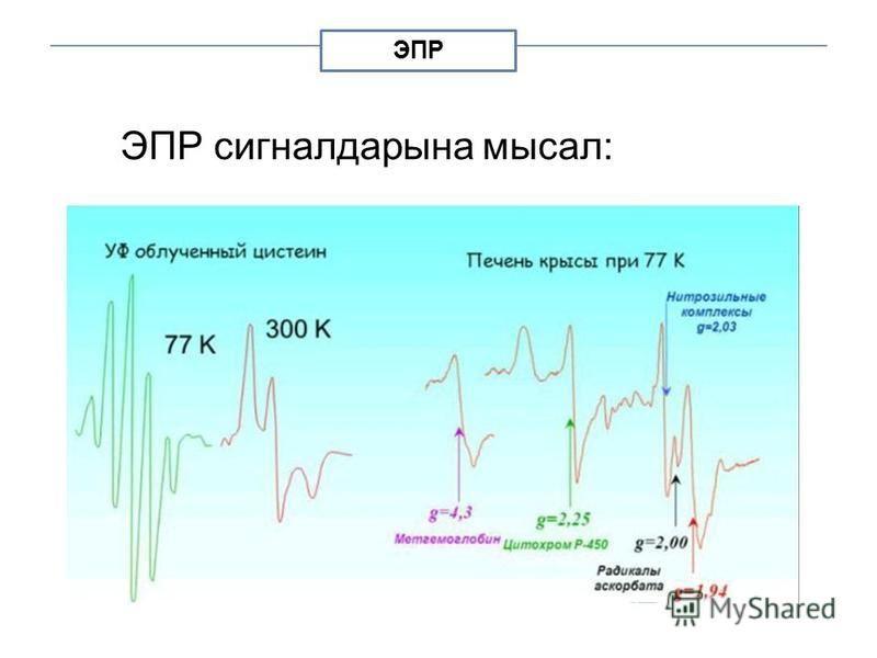 ЭПР ЭПР сигналдарына мысал: