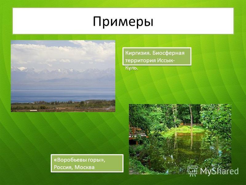 Примеры Киргизия. Биосферная территория Иссык- Куль. «Воробьевы горы», Россия, Москва