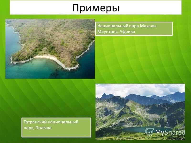 Примеры Национальный парк Махали- Маунтинс, Африка Татранский национальный парк, Польша