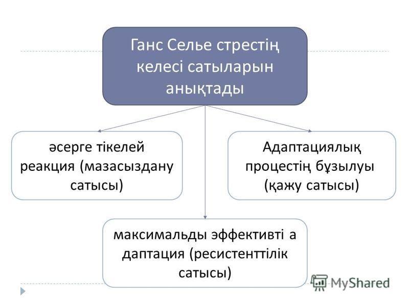 Ганс Селье стрестің келесі сатыларын анықтады әсерге тікелей реакция ( мазасыздану статусы ) максимальды эффективті адаптация ( ресистенттілік статусы ) Адаптациялық процестің бұзылуы ( қажу статусы )