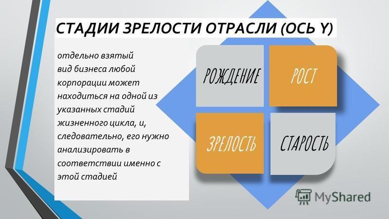 отдельно взятый вид бизнеса любой корпорации может находиться на одной из указанных стадий жизненного цикла, и, следовательно, его нужно анализировать в соответствии именно с этой стадией РОСТ ЗРЕЛОСТЬ РОЖДЕНИЕ СТАРОСТЬ СТАДИИ ЗРЕЛОСТИ ОТРАСЛИ (ОСЬ Y