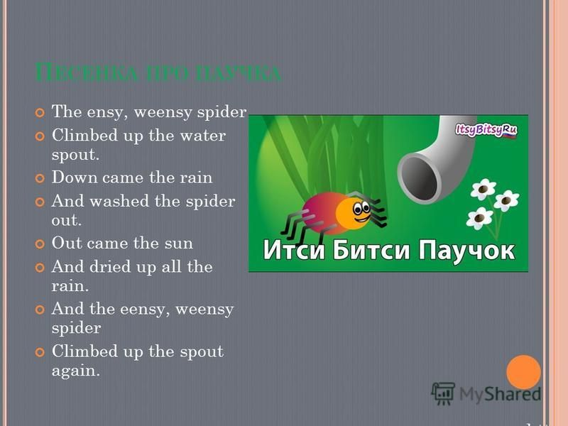П ЕСЕНКА ПРО ПАУЧКА The ensy, weensy spider Climbed up the water spout. Down came the rain And washed the spider out. Out came the sun And dried up all the rain. And the eensy, weensy spider Climbed up the spout again. https://www.y outube.com/w atch
