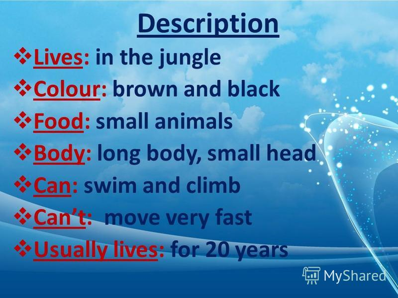 Description Lives: in the jungle Colour: brown and black Food: small animals Body: long body, small head Can: swim and climb Cant: move very fast Usually lives: for 20 years