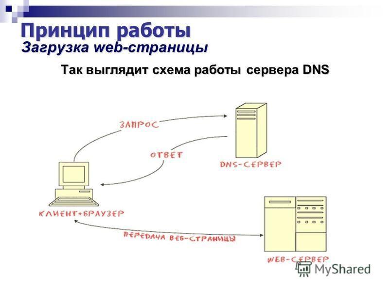 Принцип работы Загрузка web-страницы Загрузка web-страницы Так выглядит схема работы сервера DNS Так выглядит схема работы сервера DNS