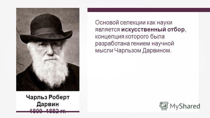 Чарльз Роберт Дарвин 1809–1882 гг. Основой селекции как науки является искусственный отбор, концепция которого была разработана гением научной мысли Чарльзом Дарвином.