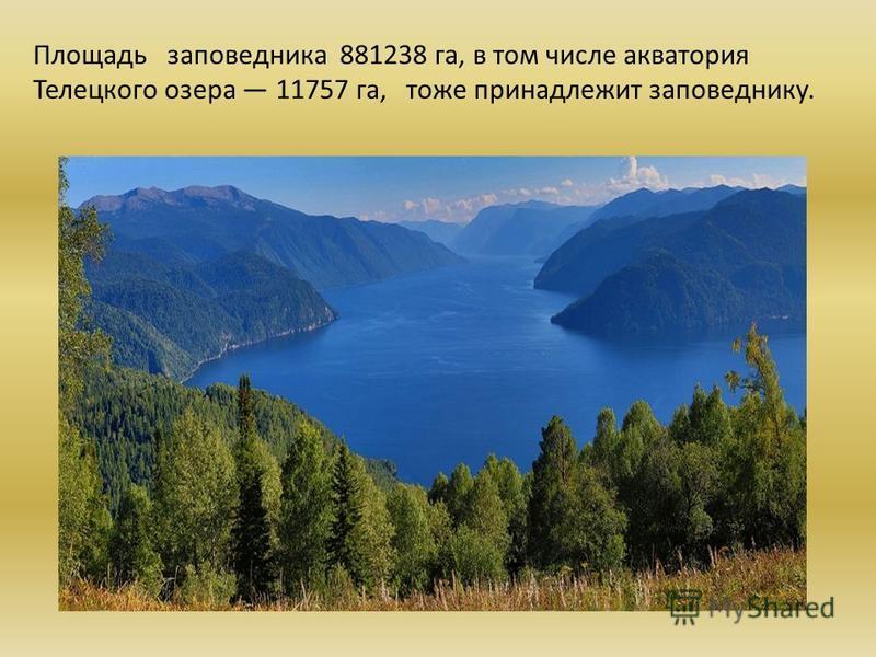 Площадь заповедника 881238 га, в том числе акватория Телецкого озера 11757 га, тоже принадлежит заповеднику.
