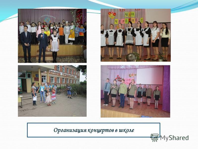 Организация концертов в школе