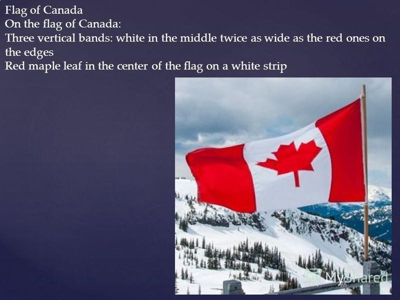 Flag of Canada On the flag of Canada: Three vertical bands: white in the middle twice as wide as the red ones on the edges Red maple leaf in the center of the flag on a white strip
