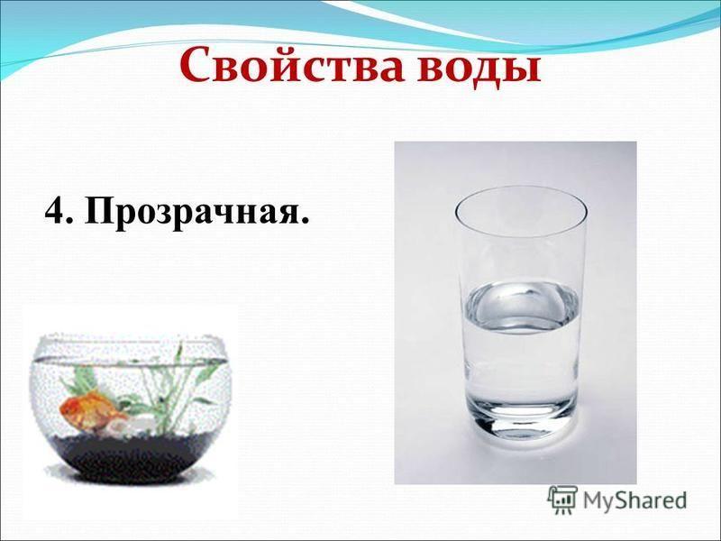 Свойства воды 4. Прозрачная.