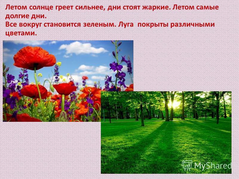 Летом солнце греет сильнее, дни стоят жаркие. Летом самые долгие дни. Все вокруг становится зеленым. Луга покрыты различными цветами.
