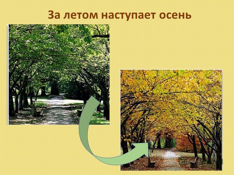 За летом наступает осень