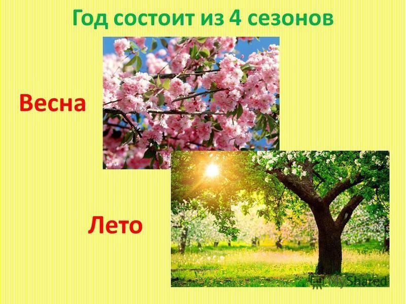 Год состоит из 4 сезонов Весна Лето