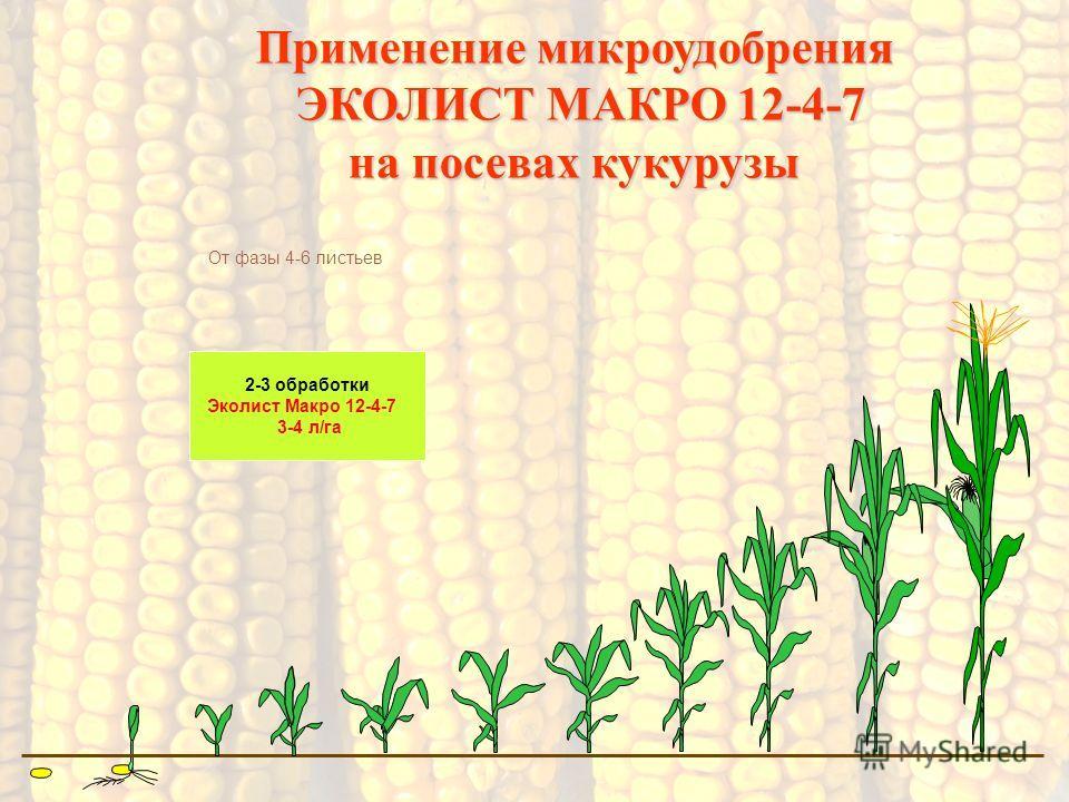 2-3 обработки Эколист Макро 12-4-7 3-4 л/га Применение микроудобрения ЭКОЛИСТ МАКРО 12-4-7 ЭКОЛИСТ МАКРО 12-4-7 на посевах кукурузы От фазы 4-6 листьев