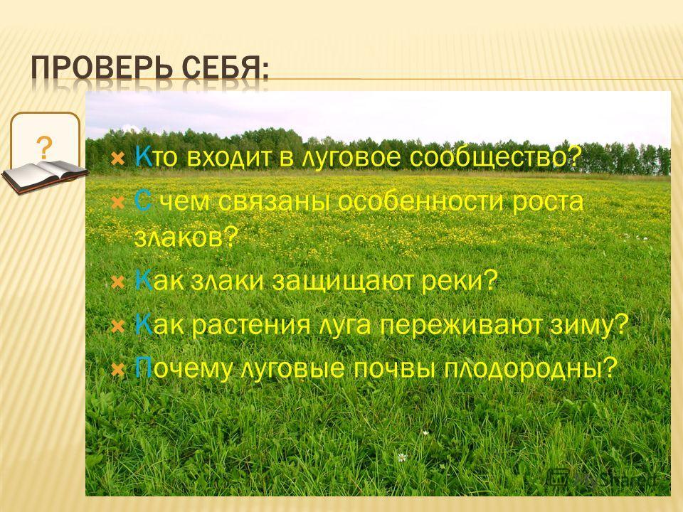 Кто входит в луговое сообщество? С чем связаны особенности роста злаков? Как злаки защищают реки? Как растения луга переживают зиму? Почему луговые почвы плодородны? ?