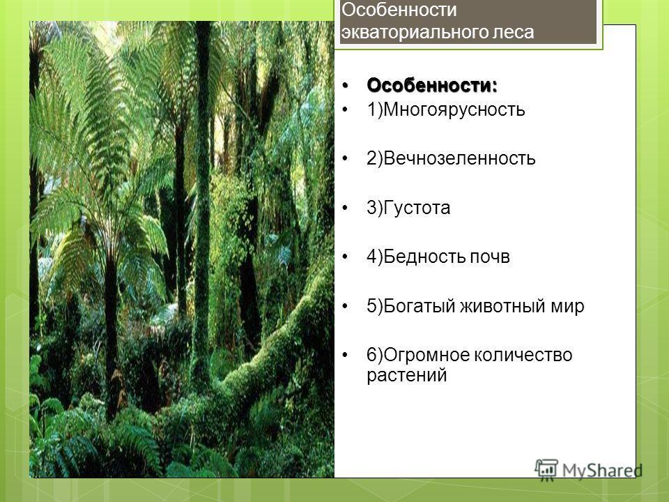 Особенности экваториального леса Особенности:Особенности: 1)Многоярусность 2)Вечнозеленность 3)Густота 4)Бедность почв 5)Богатый животный мир 6)Огромное количество растений