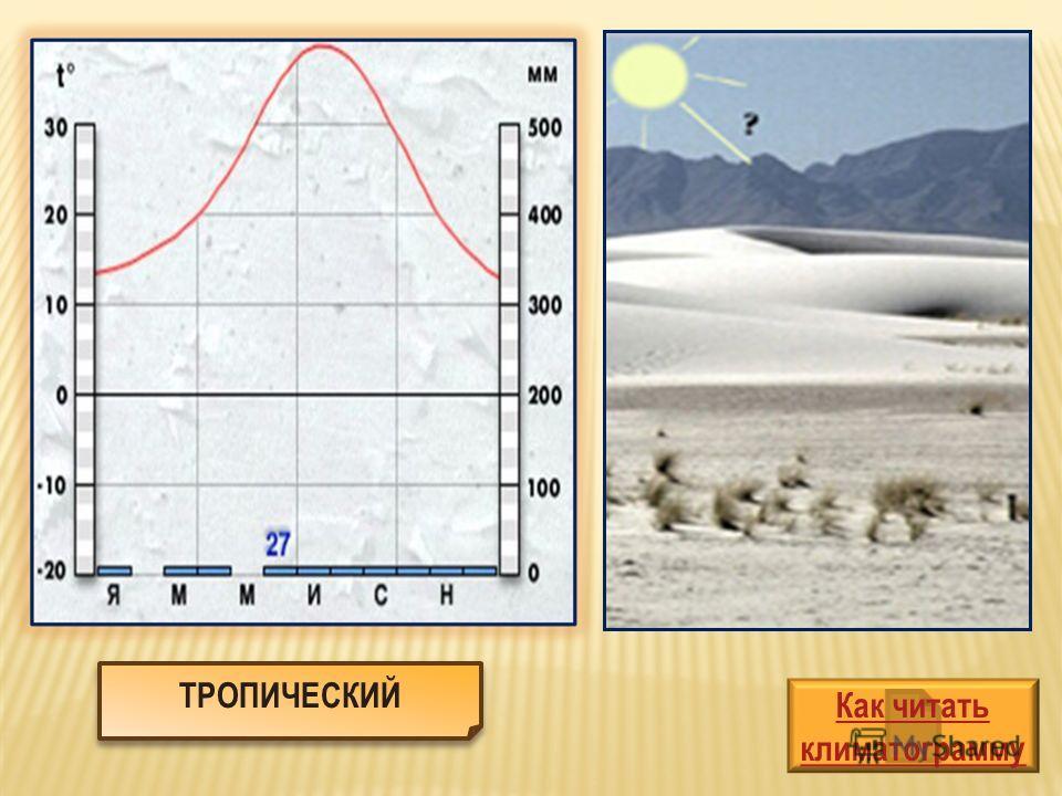 Как читать климатограмму ТРОПИЧЕСКИЙ