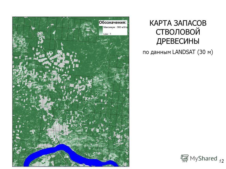 12 КАРТА ЗАПАСОВ СТВОЛОВОЙ ДРЕВЕСИНЫ по данным LANDSAT (30 м)