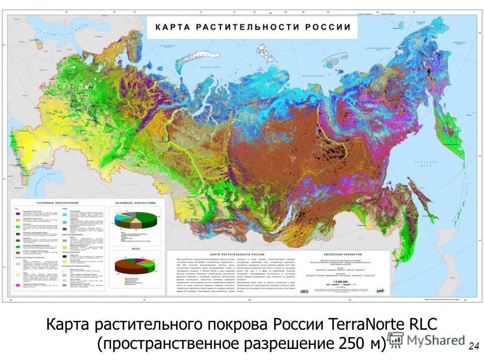 24 Карта растительного покрова России TerraNorte RLC (пространственное разрешение 250 м)