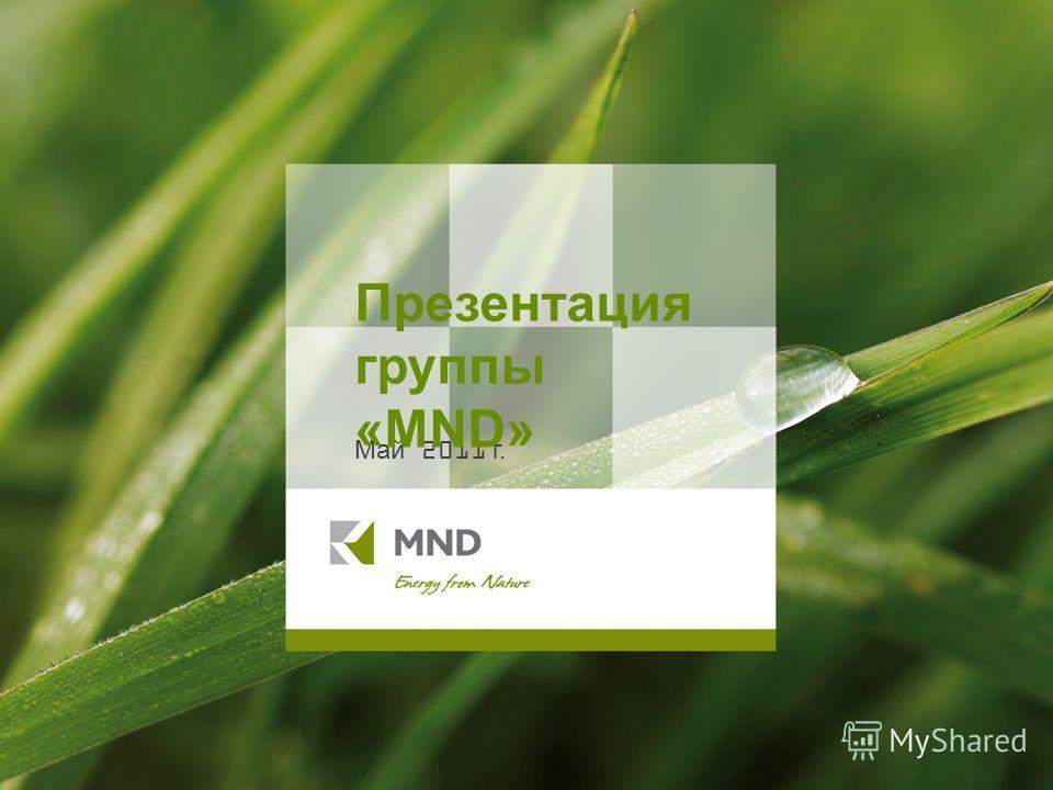 Май 2011 г. Презентация группы «MND»
