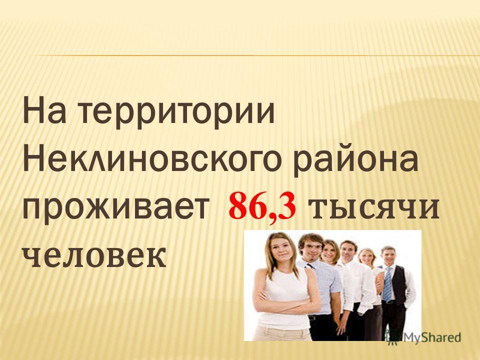 На территории Неклиновского района проживает 86,3 тысячи человек