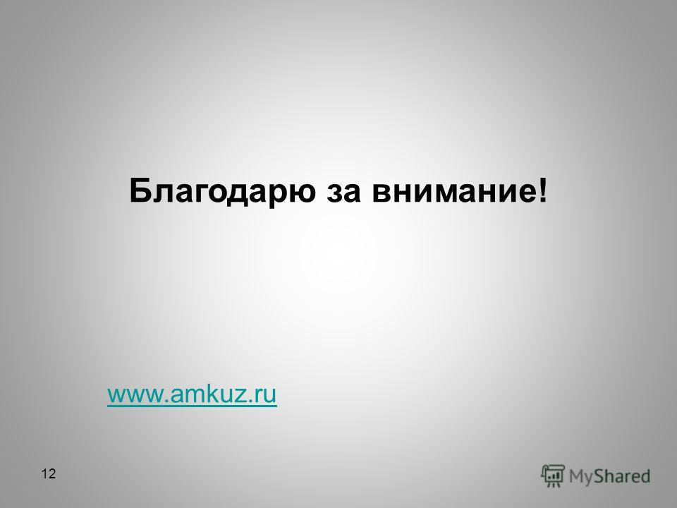 Благодарю за внимание! www.amkuz.ru 12