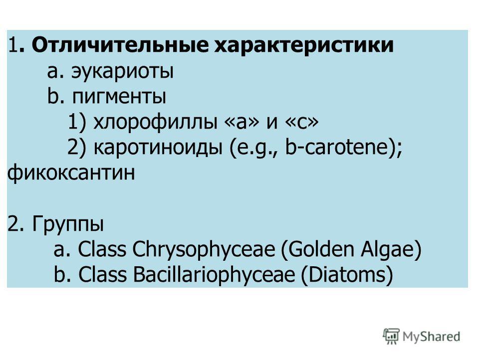 1. Отличительные характеристики a. эукариоты b. пигменты 1) хлорофиллы «а» и «c» 2) каротиноиды (e.g., b-carotene); фикоксантин 2. Группы a. Class Chrysophyceae (Golden Algae) b. Class Bacillariophyceae (Diatoms)