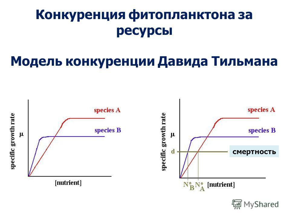 Конкуренция фитопланктона за ресурсы Модель конкуренции Давида Тильмана смертность