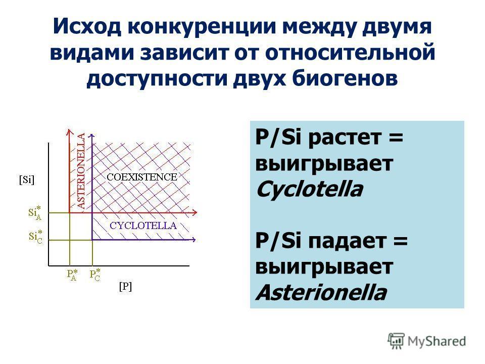 Исход конкуренции между двумя видами зависит от относительной доступности двух биогенов P/Si растет = выигрывает Cyclotella P/Si падает = выигрывает Asterionella