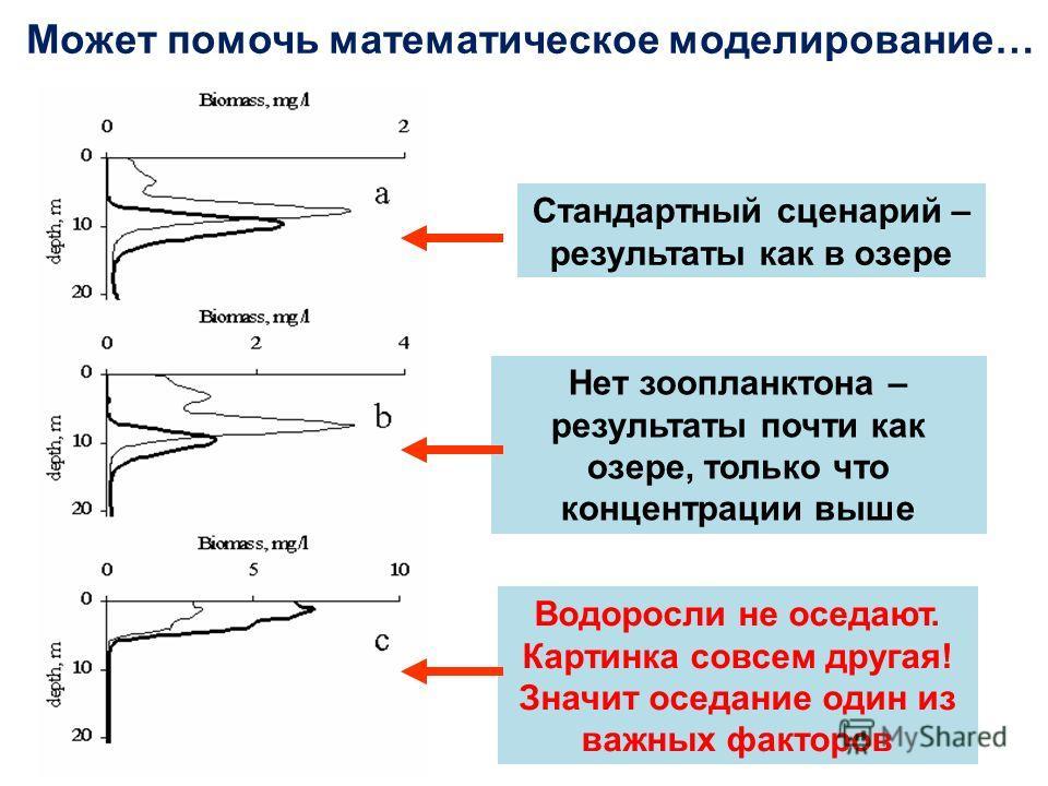 Может помочь математическое моделирование… Стандартный сценарий – результаты как в озере Нет зоопланктона – результаты почти как озере, только что концентрации выше Водоросли не оседают. Картинка совсем другая! Значит оседание один из важных факторов