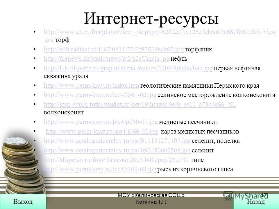 Интернет-ресурсы http://www.e1.ru/fun/photo/view_pic.php/p/62fd2afb8126e3eb5a03a889f880d959/view.pic торфhttp://www.e1.ru/fun/photo/view_pic.php/p/62fd2afb8126e3eb5a03a889f880d959/view.pic http://s60.radikal.ru/i167/0811/72/7f926298eb02. jpg торфяник