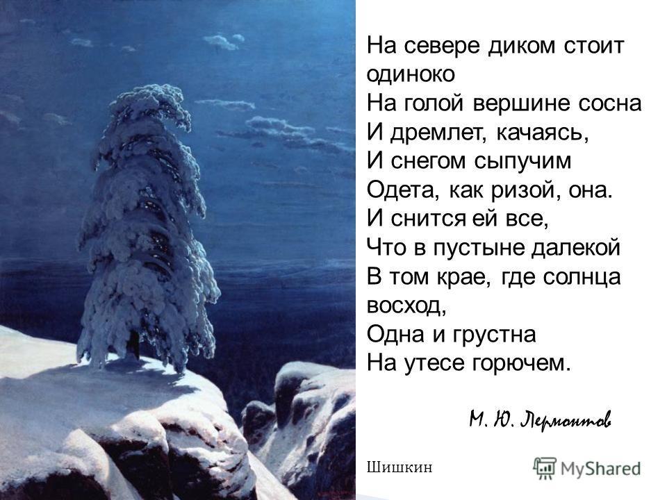 На севере диком стоит одиноко На голой вершине сосна И дремлет, качаясь, И снегом сыпучим Одета, как ризой, она. И снится ей все, Что в пустыне далекой В том крае, где солнца восход, Одна и грустна На утесе горючем. М. Ю. Лермонтов Шишкин
