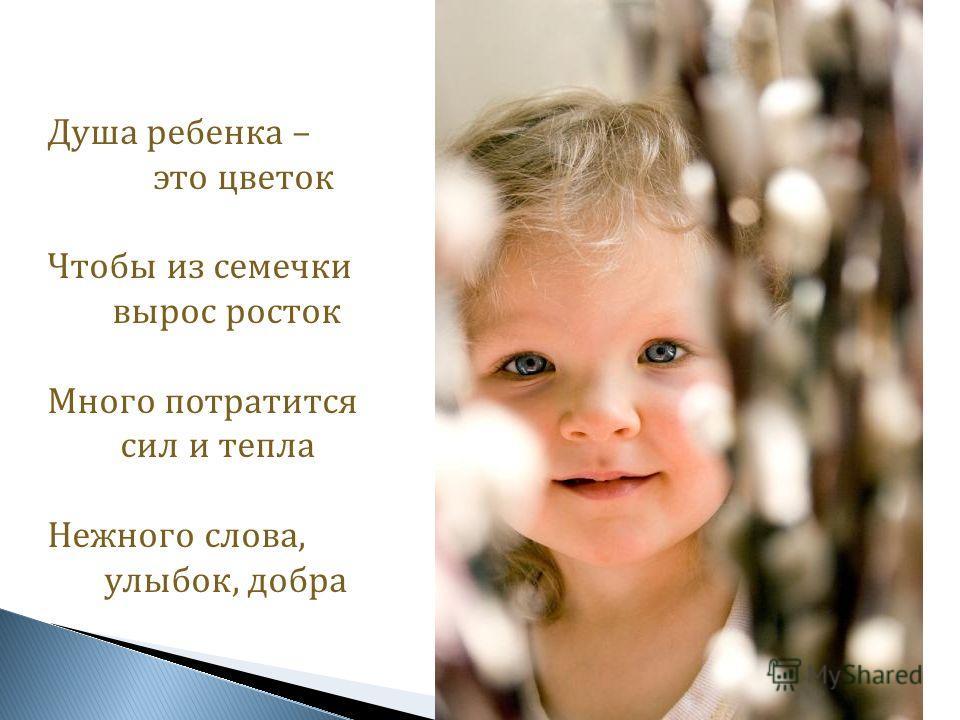 Душа ребенка – это цветок Чтобы из семечки вырос росток Много потратится сил и тепла Нежного слова, улыбок, добра