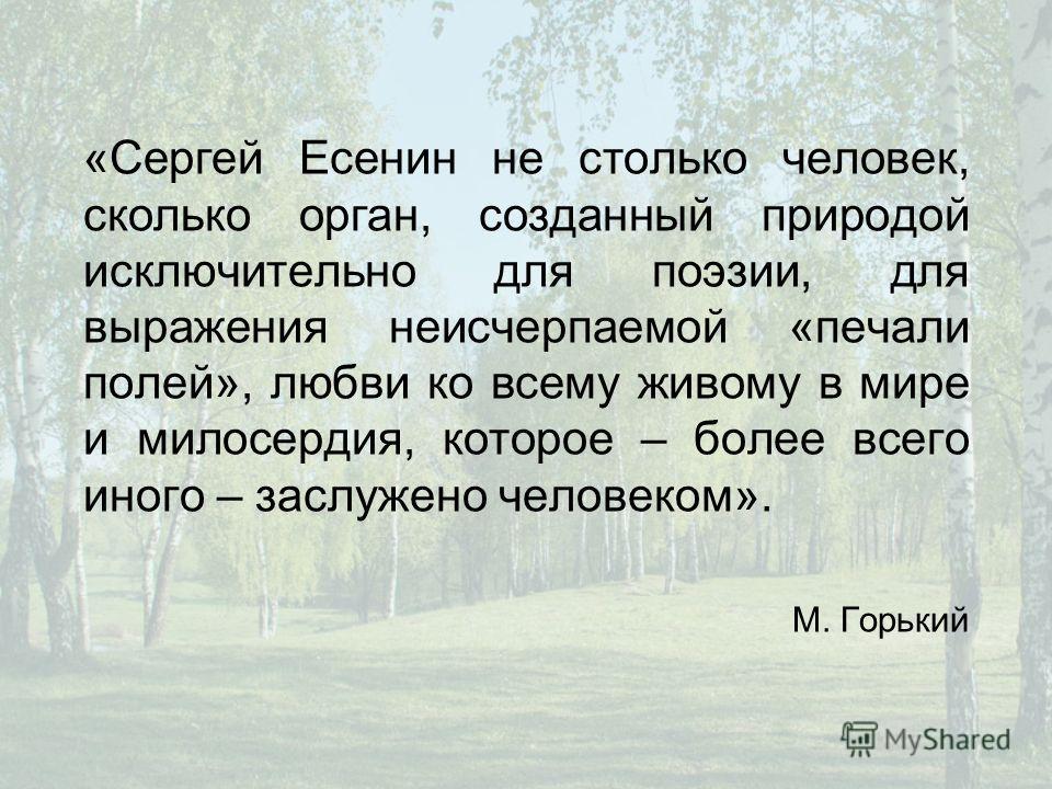 «Сергей Есенин не столько человек, сколько орган, созданный природой исключительно для поэзии, для выражения неисчерпаемой «печали полей», любви ко всему живому в мире и милосердия, которое – более всего иного – заслужено человеком». М. Горький