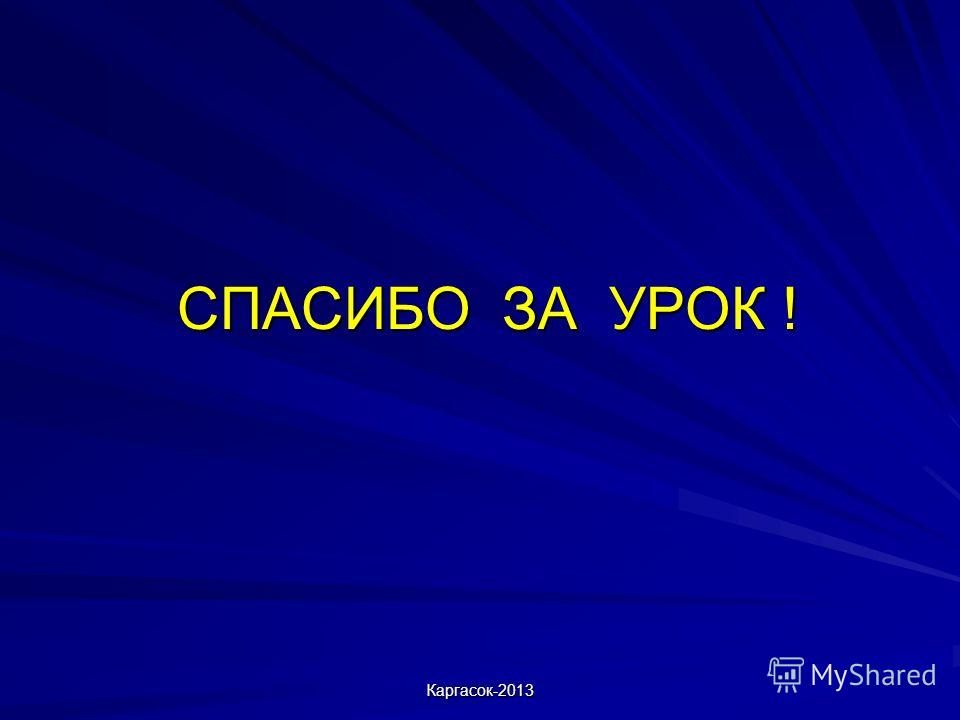 СПАСИБО ЗА УРОК ! Каргасок-2013