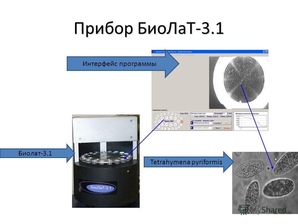 3 Прибор Био ЛаТ-3.1 Интерфейс программы Биолат-3.1 Tetrahymena pyriformis