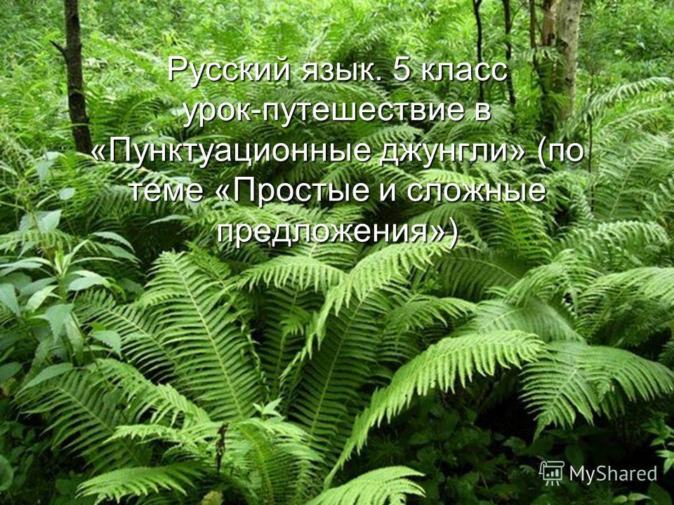 Русский язык. 5 класс урок-путешествие в «Пунктуационные джунгли» (по теме «Простые и сложные предложения»)