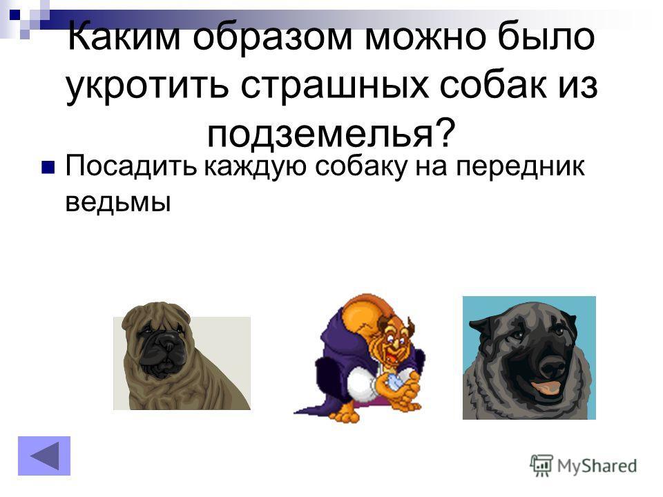Каким образом можно было укротить страшных собак из подземелья? Посадить каждую собаку на передник ведьмы