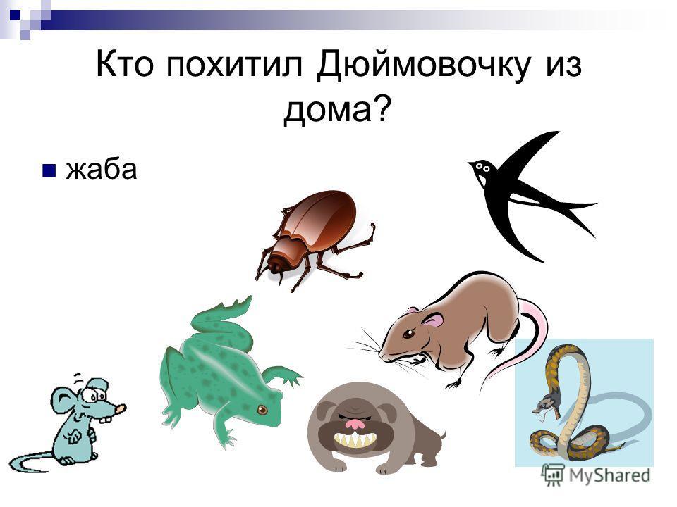 Кто похитил Дюймовочку из дома? жаба