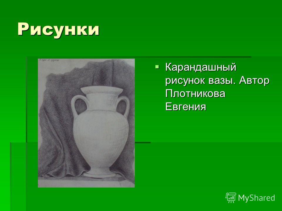 Рисунки Карандашный рисунок вазы. Автор Плотникова Евгения Карандашный рисунок вазы. Автор Плотникова Евгения
