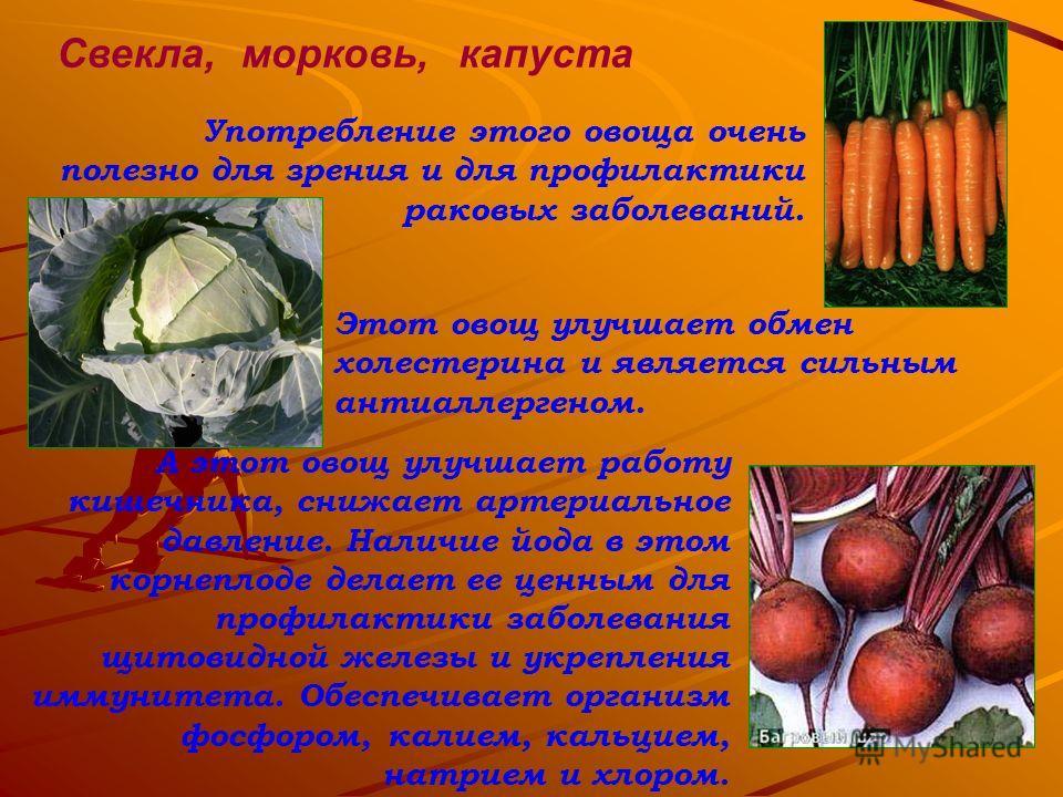Свекла, А этот овощ улучшает работу кишечника, снижает артериальное давление. Наличие йода в этом корнеплоде делает ее ценным для профилактики заболевания щитовидной железы и укрепления иммунитета. Обеспечивает организм фосфором, калием, кальцием, на
