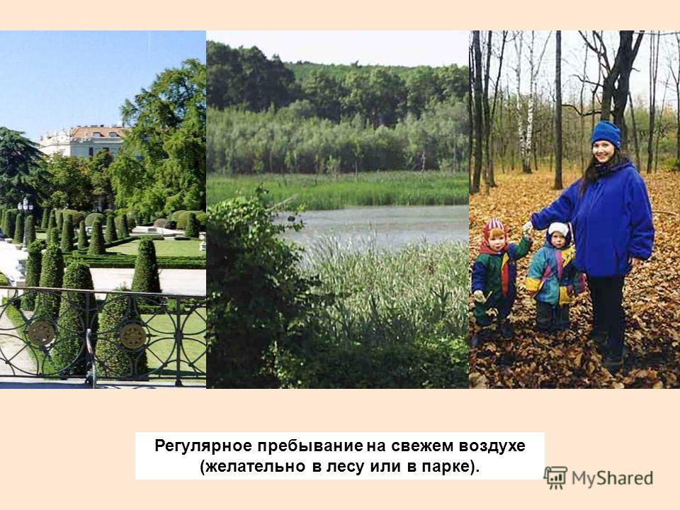 Регулярное пребывание на свежем воздухе (желательно в лесу или в парке).